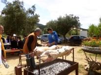chamaloni-agritourism-holidays-finikounda-2