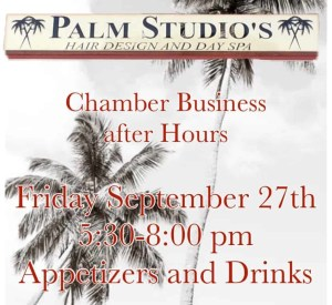 BAH Palm Studios