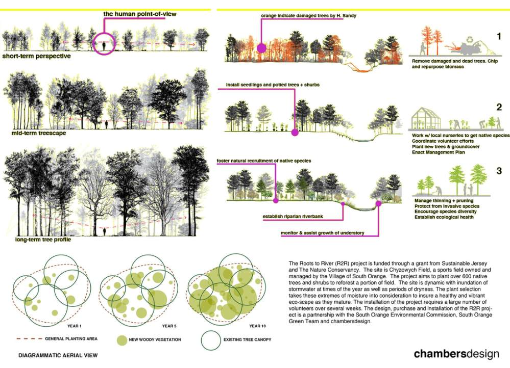 medium resolution of our clark st project will act as a green infrastructure as much as a reforested plot of land
