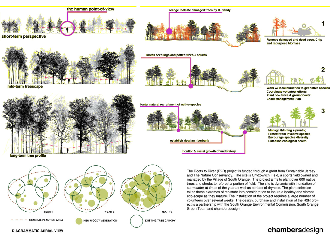hight resolution of our clark st project will act as a green infrastructure as much as a reforested plot of land