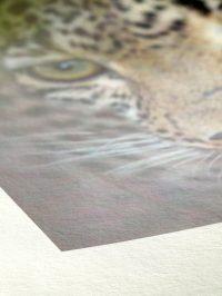 Papier Fine Art