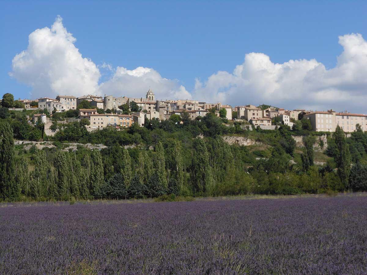 plateau dAlbion  Chambres dhtes en Provence