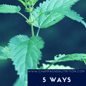 5 Ways to Benefit from Nettles