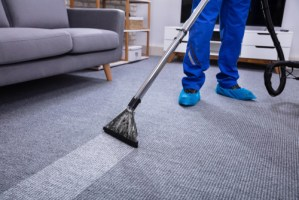 Carpets professionally cleaned with steam powered cleaning technology
