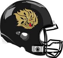 Image result for UAPB football helmets