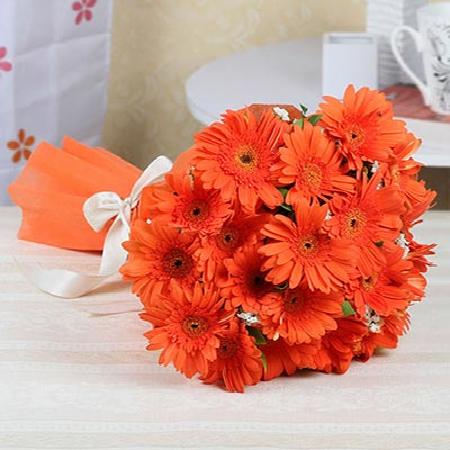 CF 20 Orange Gerberas