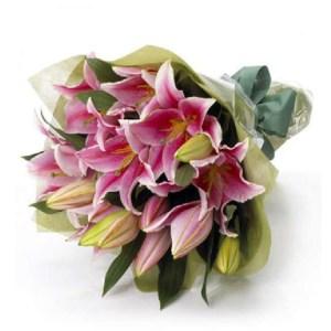 CF Affectionate Bloom