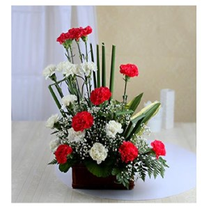 CF Red & White Carnation Basket