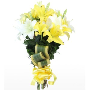 CF Yellow and White Lilies