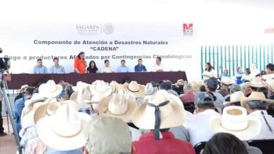entrega seguro catastrófico Michoacán