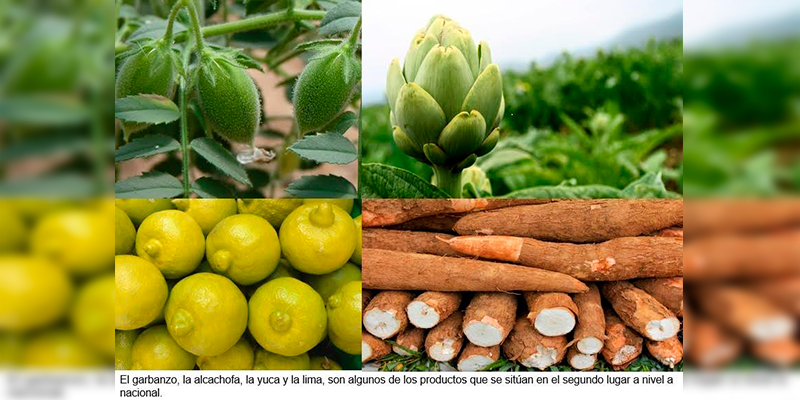 #Michoacán-2do-Lugar-En-12-Productos-Del-Campo-A-Nivel-Nacional