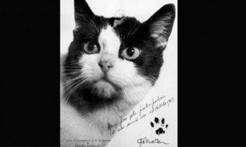 monumento-gato-viaje-espacial-París