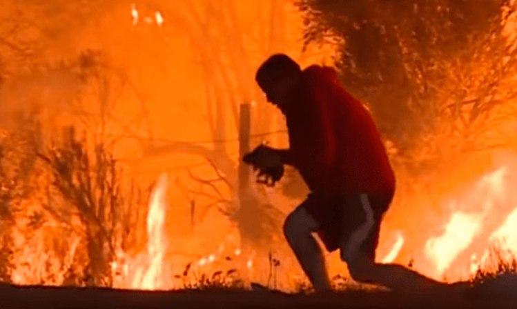 joven-salva-conejo-incendio-California