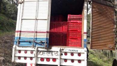 Photo of #Michoacán Paran Cargamento De Aguacate Ilegal; Harían Guacamole Maligno