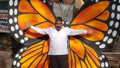 Photo of #Michoacán ONU Y CNDH Se Suman A Búsqueda De Protector De La Mariposa Monarca