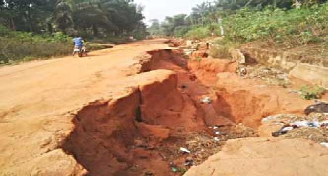 NEWMAP, Environmental Degradation