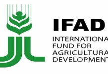 Ifad Extends Vcdp To Accommodate Dry Season Farming