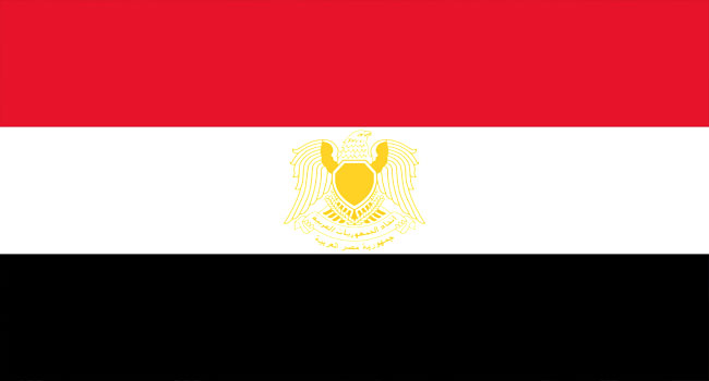 A file photo of the Egyptian national flag.