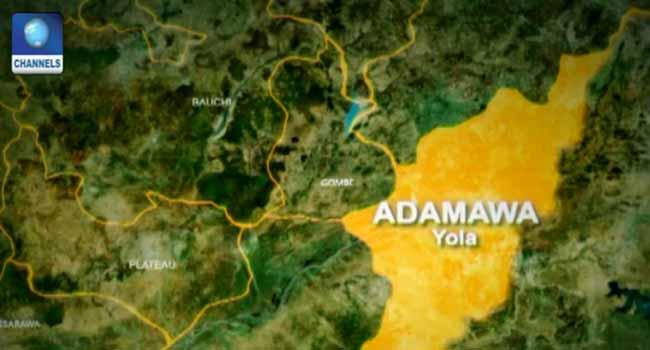 Adamawa is a state in Nigeria's north-east region.