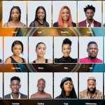 BBNaija First Twist: Who Are The Wildcards?