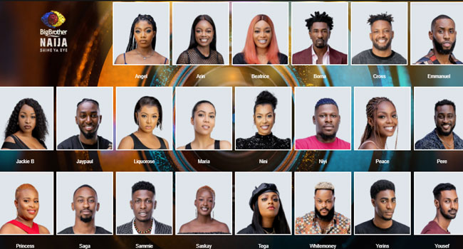 BBNaija First Twist: Who Are The Wildcards? – Channels Television