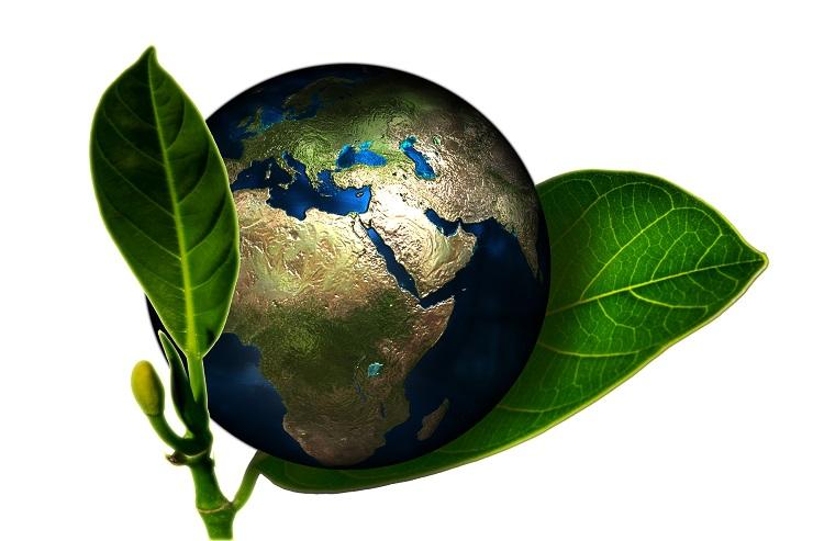 Brevetti free per nuove tecnologie a basse emissioni di carbonio