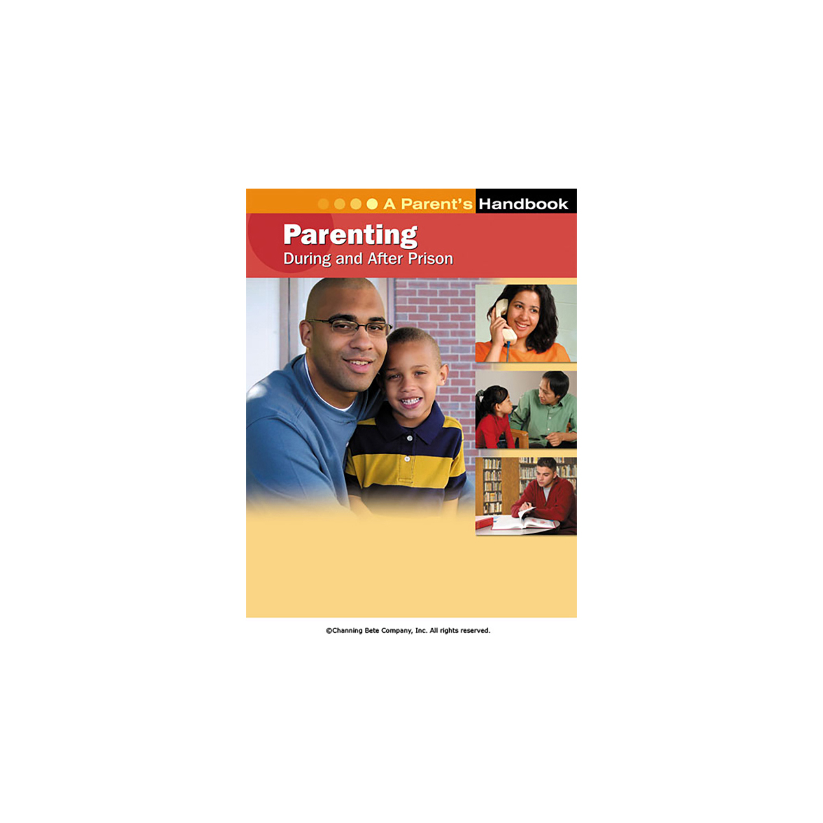 Parenting During And After Prison A Parent S Handbook
