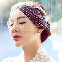 Birdcage Hair Net Face Veil Fascinator Wedding Bridal ...