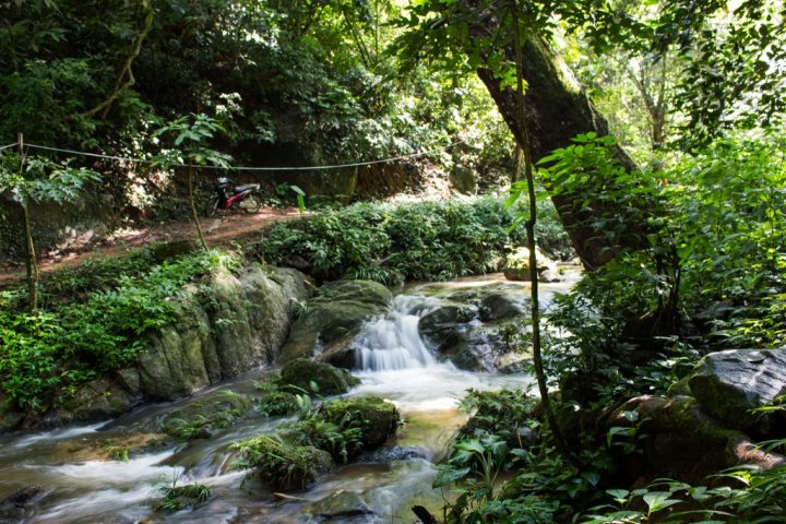 flight-of-the-gibbons-waterfall