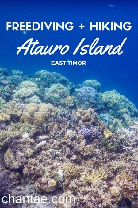 Atauro Island, East Timor is a little piece of paradise that is rarely visited by outsiders. Read about what it's like to freedive and hike on Atauro, East Timor.