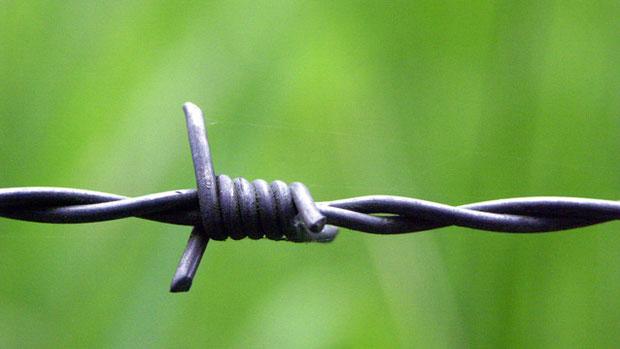 Prikkeldraad houd je gevangen