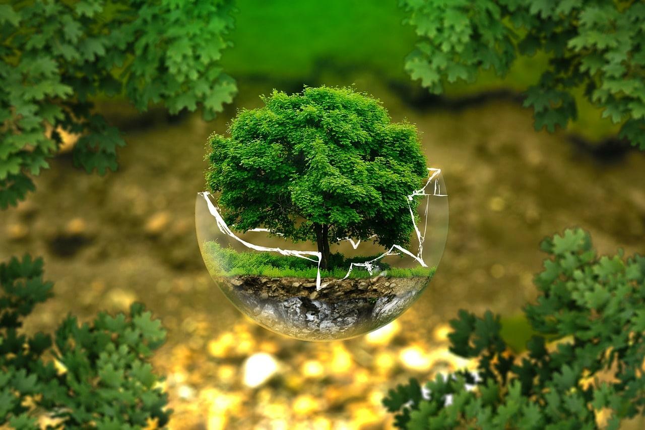 Souveraineté et Écologie