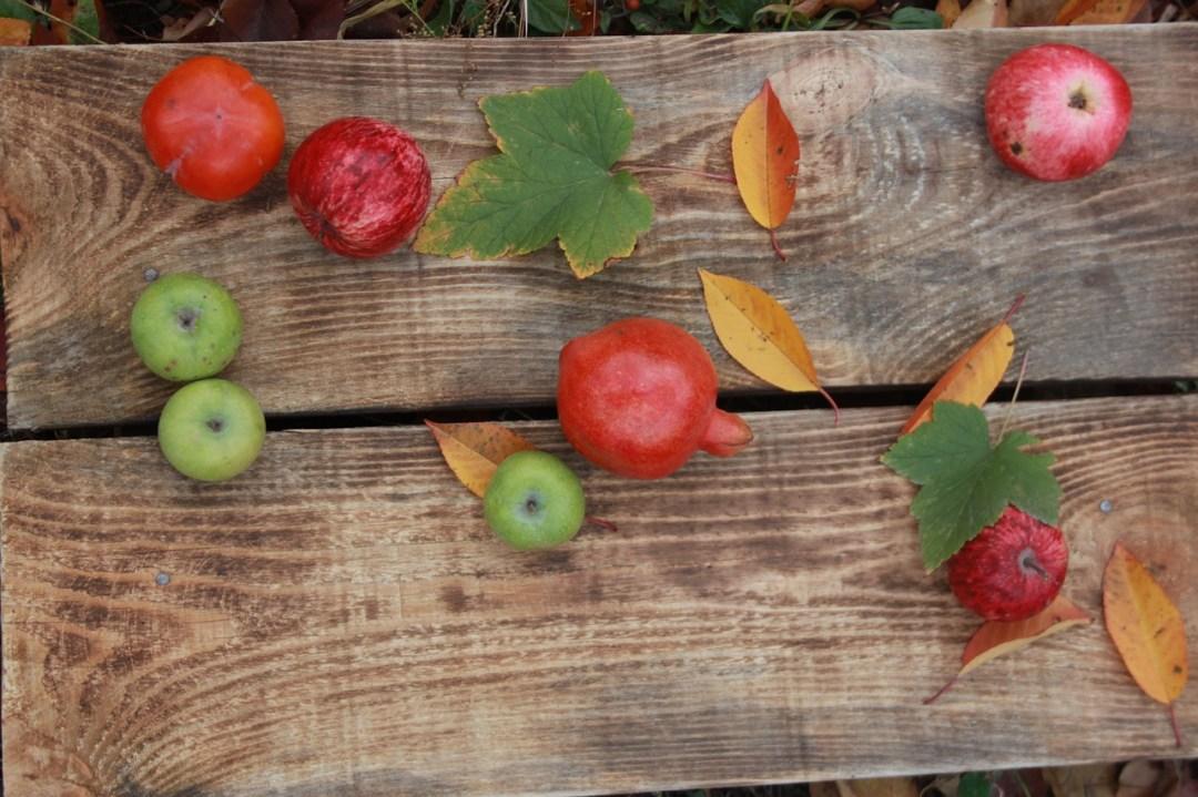 Chansons d\'automne, la suite !
