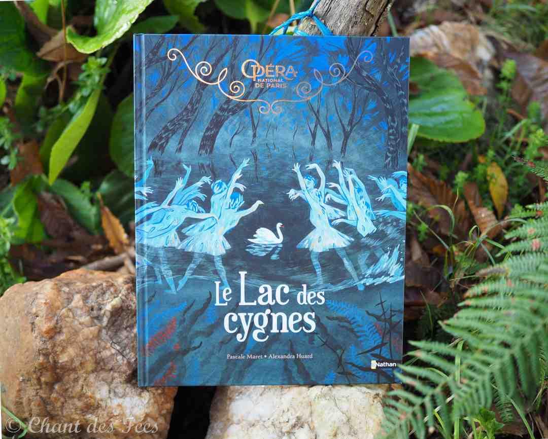 Le magnifique album Le lac des Cygnes