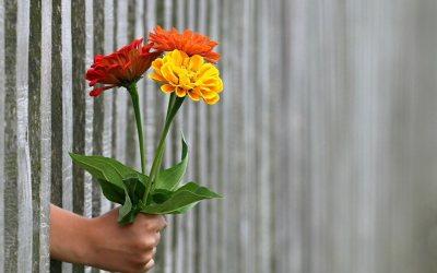 J+8 du confinement : humanisme, égalité, et respect