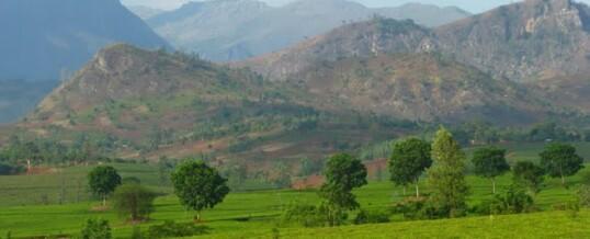 Hills Of Africa Travel
