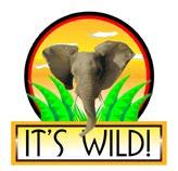It's Wild!