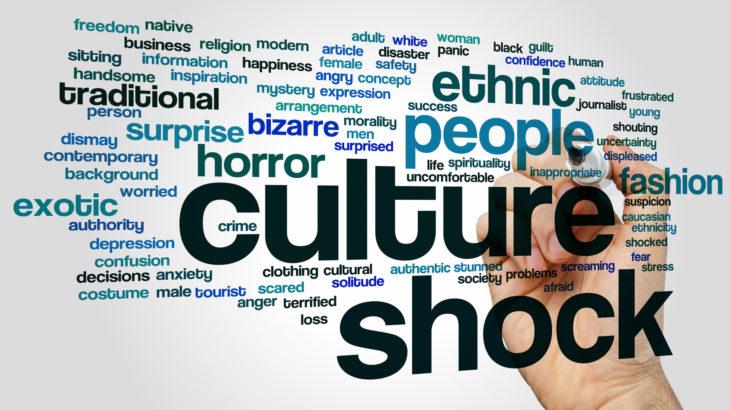 පිට රටකට යන කෙනෙක්ට මුහුණ දෙන්න වෙන Culture Shock කියන්නේ මොකක්ද ?