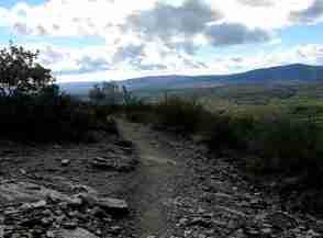 Dieser Weg wird kein leichter sein...