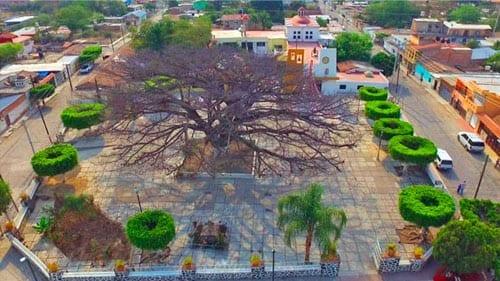 Santa Cruz de la Soledad