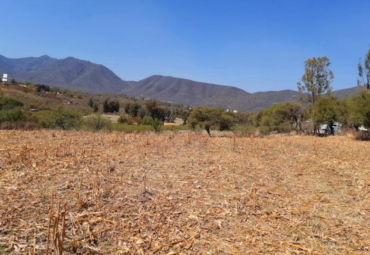 Home for sale in Chapala