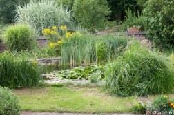 F. Bach - Août 2010 - Jardins et étang