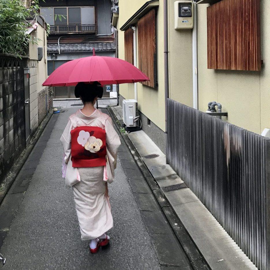 kyoto umbrella maiko