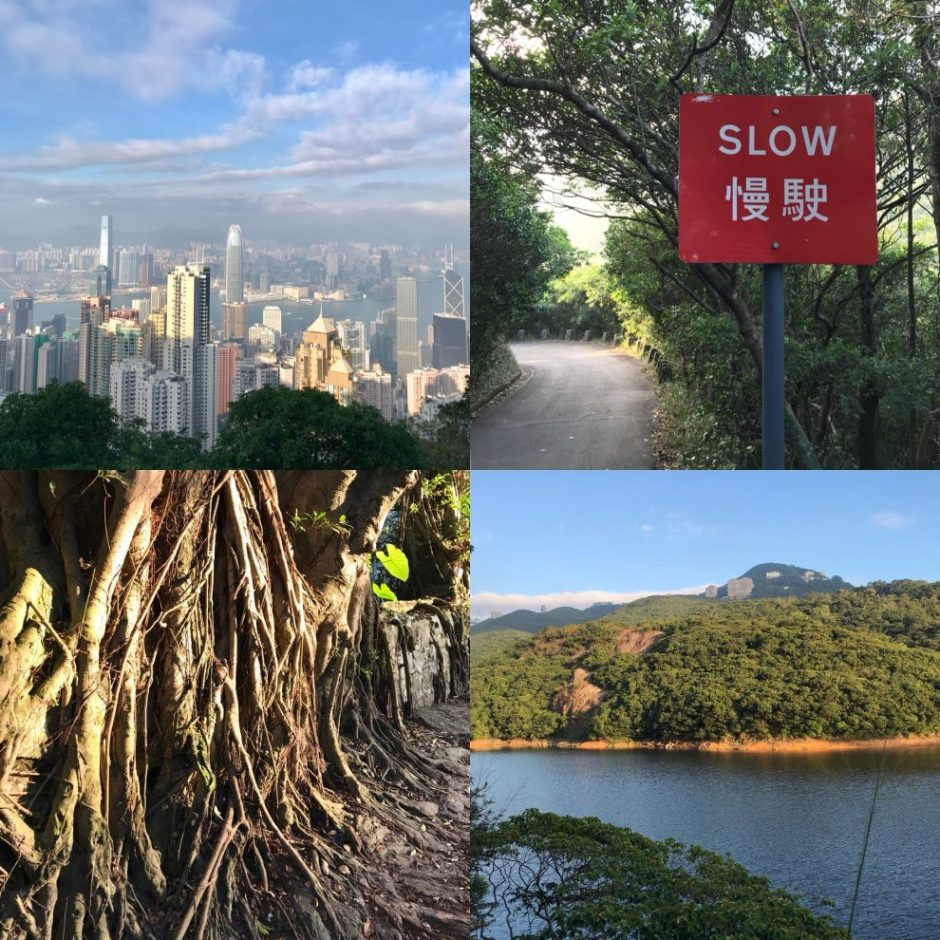 HOng Kong Peak hike trail