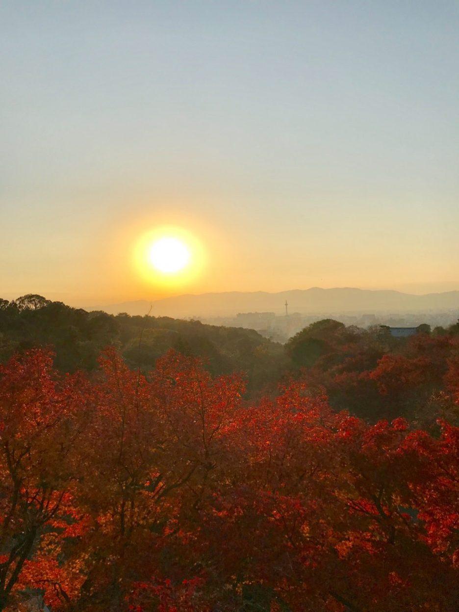 kyoto rising sun