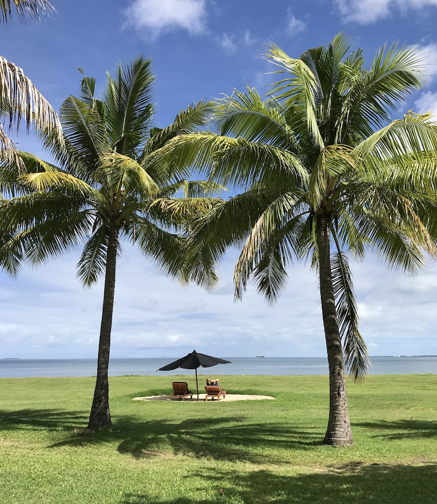 Photo Journal Featuring The Faces Of Fiji Chapter Fifty Photo - Palm-tree-furniture-from-pacific-green