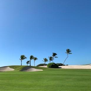 golf dominican republic