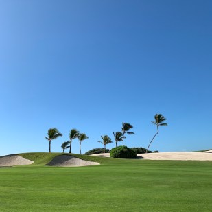 golf dominican republic