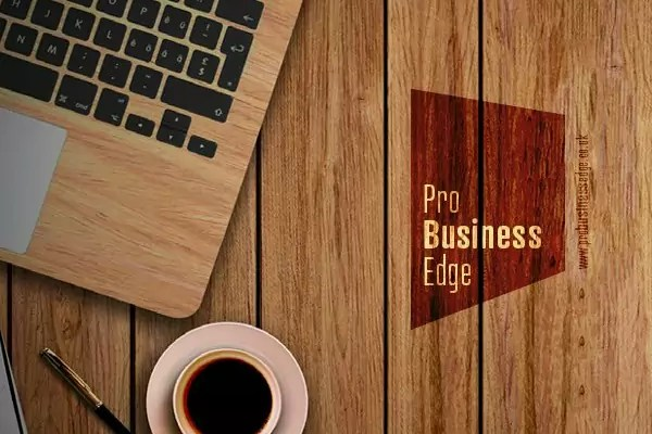 Logo and Branding for Pro Business Edge