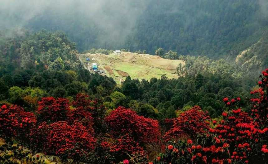 Picturesque Chopta, the Mini Switzerland of Uttarakhand